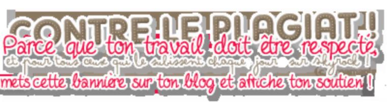 ♫       Présentation du blog