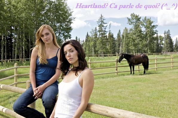 Bienvenue dans l'univers d'Heartland: L'histoire