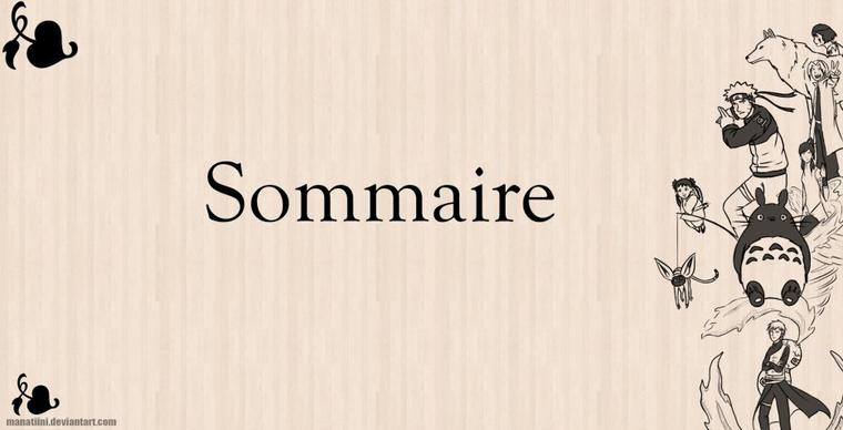 ~Sommaire ~