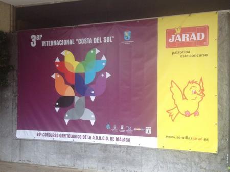 "III Internacional ""Costa del Sol"" 2012"