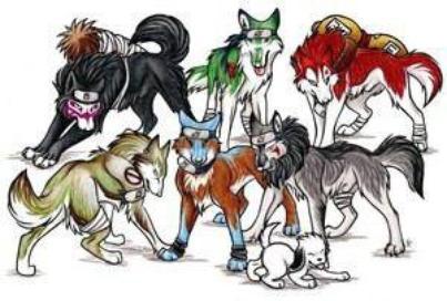 trensformation en chien groupe  n 2