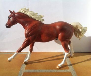 California Chrome de L'Ym