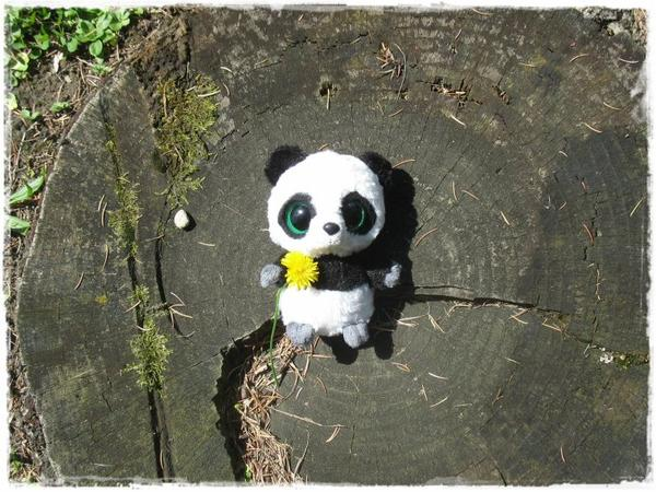 Bienvenue sur le blog de Tao le Panda !