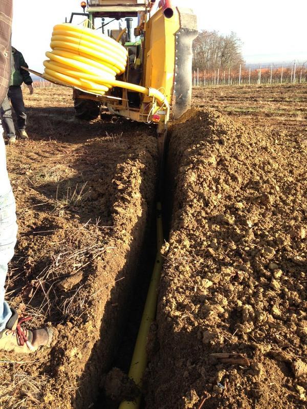 Journée drainage sur une parcelle de vigne arrachée