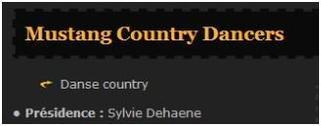 Les Mustangs Country Dancers