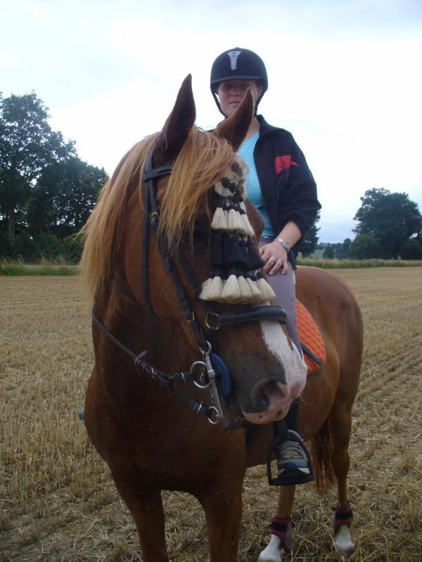 """""""Marre des gens qui disent que l'équitation n'est pas un sport....... Mais dans un sens ils ont raisons : L'équitation n'est pas un sport, c'est un art."""""""