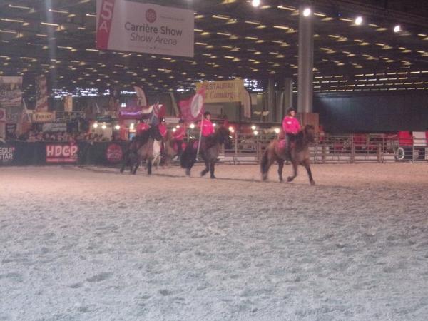 Salon du cheval à Paris 2017