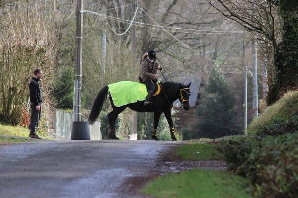 « En voyant le dimanche matin les gens jouer au tiercé on se met à penser que l'homme est la moins noble conquête du cheval.  »