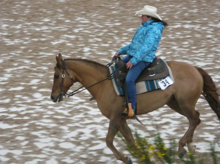 """""""Monter à cheval pour se remonter le moral, c'est savoir monter sans perdre le moral! """""""