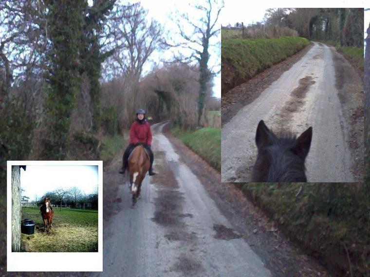Qu il te soit donné d être toujours à cheval afin que ton oeil divague sur les cimes, mais ne te détourne jamais de ta monture ou tu seras apatride sous le soleil !
