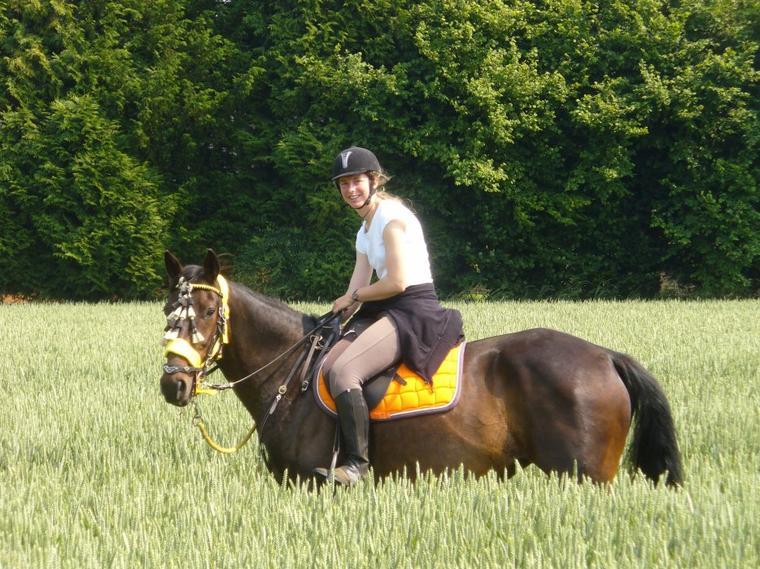 """""""L'art équestre, c'est l'art pour le cavalier de rester tranquille et de garder son cheval droit."""""""