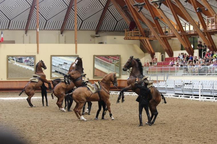 JEM en Normandie 2014 et Cadre noir de Saumur