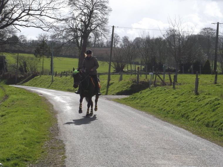 """""""Tu dois te fondre dans ton cheval, Ne faire qu'un, jusqu'à sentir en toi le sol au bout de ses pieds. Alors tu deviens cavalier."""""""