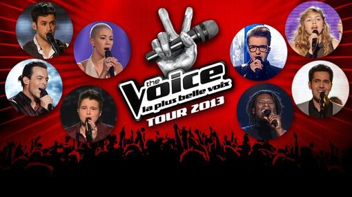 THE VOICE-TOUR 2013