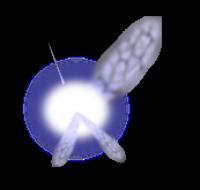 La téméraire petite fée Navi