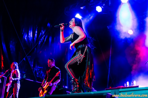 Review : Evanescence - Summer Nights Open Air/Suisse 08/07/17  Partie II