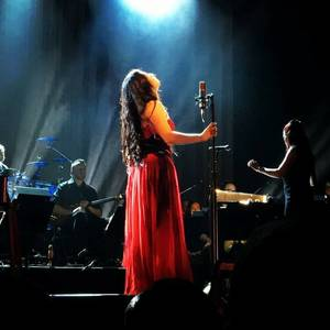 Review : Evanescence/Synthesis Live - Houston 20/10/17 Partie I