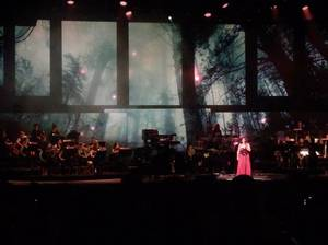 Review : SynthesisLive/Ft Lindsey Stirling - Tampa 17/08/18 Partie II