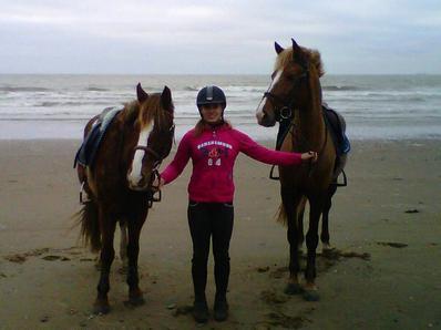 Les poneys a la plage..<3.