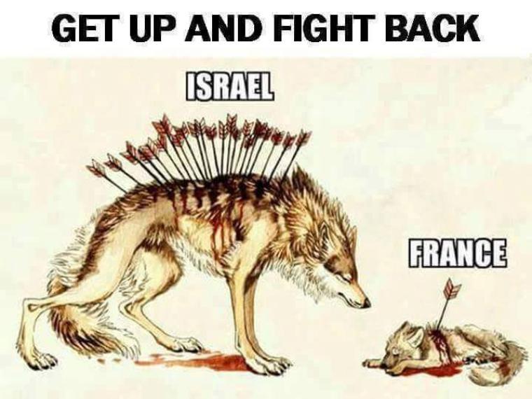 Le loup de la Maison de David, frappé mille fois, est toujours debout et vaillant. La louve de la Terre de Jeanne, blessée, panse ses plaies et se couche ...