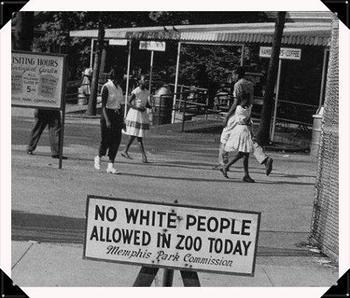 apartheid system in south africa pdf