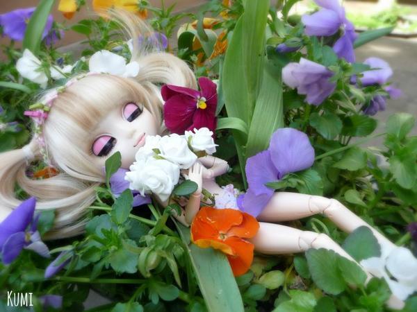 Ma Photo pour le Concours de Kawasu-Pullip ~
