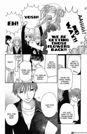 B.A.M n°3 : Fruits Basket
