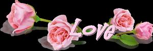 MERCI MA CHERE AMIE ROMANTIK POUR TON SUBLIME CADEAU ET POUR TA GRANDE GENTILLESSE PORTE TOI BIEN ET PASSE UNE AGREABLE SOIREE SUIVIE D'UNE PAISIBLE NUIT ET UNE EXCELLENTE SEMAINE GROS BISOUS YOUR FRIEND KIMO