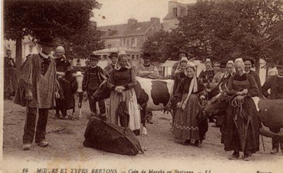 """Extrait de ma collection de cartes postales anciennes   """"Ethnologie""""   Marchés"""