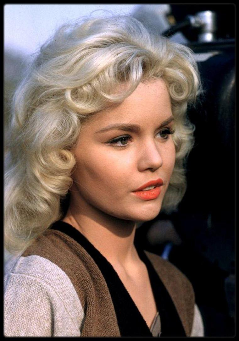 Tuesday WELD