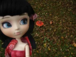 Prune -automne