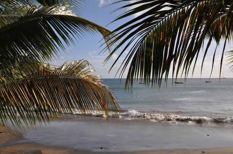 vacances en Martinique ♥
