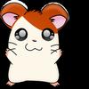Hampton The Hampster -- [ Hamster Dance Song ]