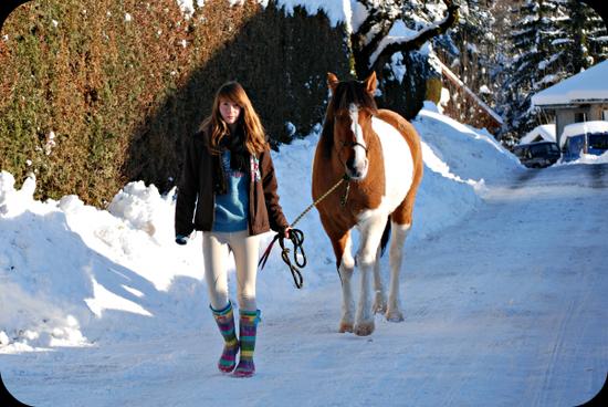 """""""Un cheval ne se regarde pas avec les yeux mais avec le c½ur."""""""