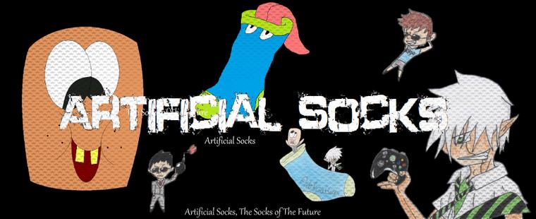 Présentation d'Artificial Socks !