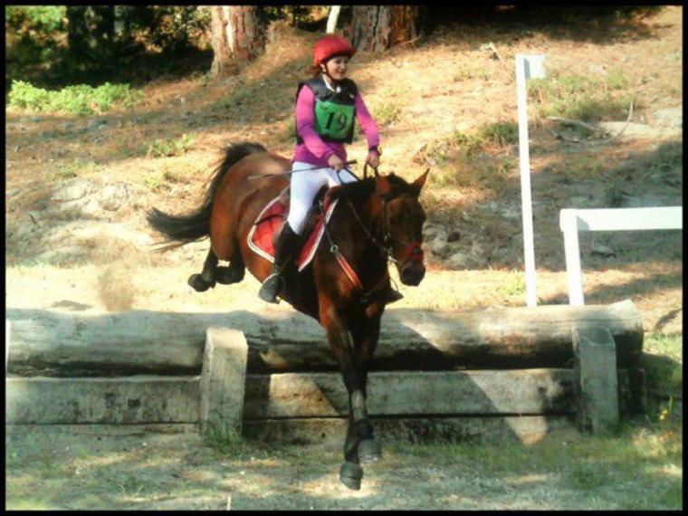Mon poney .. Newton Du Meurouge <3