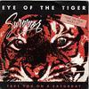 eyes of the tiger - survivor