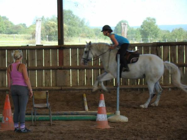 Le vent de la liberter souffle entre les oreilles d'un cheval .♥