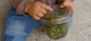 Petit escargot porte sur son dos sa maisonnette aussitôt qu il pleut il est tout heureux il sort sa tête ! ! Notre escargotière ! Le monde du vivant !