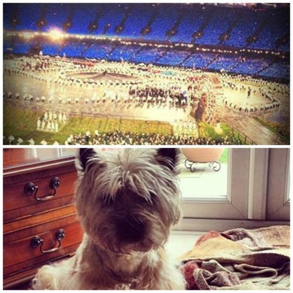 28/07/2012 - Photo des J.O + son chien Pepper