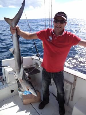 peche aux requins