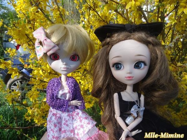 Shiiiroo chez moi et bourse de puericulture avec Shiiiroo