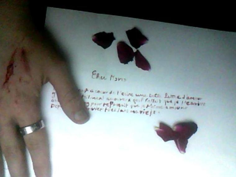 les premiers mots de ma lettre d'amour ecris avec mon sang