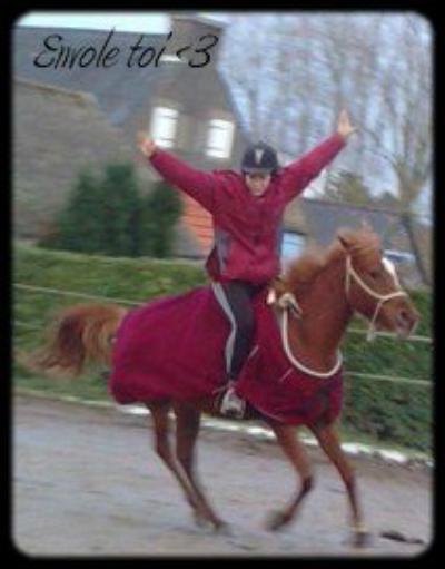Faire corps avec sa monture n'est pas qu'une expression, un bon cavalier doit avoir l'âme du Centaure.