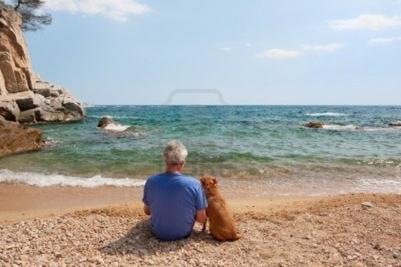 Le meilleur ami de l'homme: