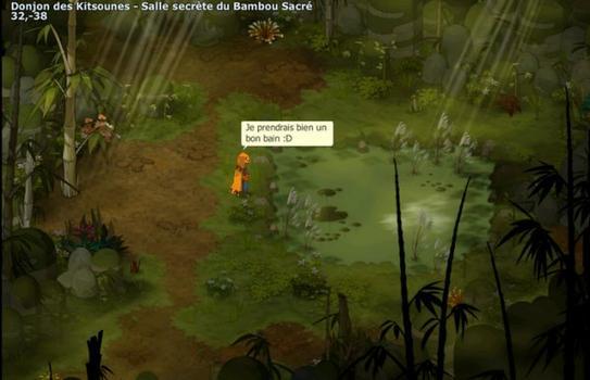 Dofus Secret : Flash infos ! Une map secrète dans le donjon des kitsounes !