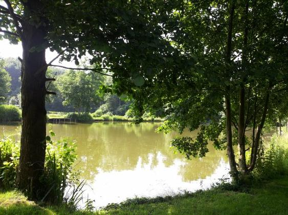Bienvunue à notre étang d'Erbisoeul