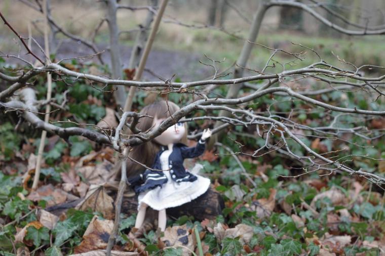 promenons nous dans les bois ,pendant que maman n'y ai pas ... (suite )
