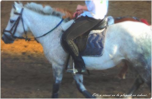 ● On a tendance de nos jours à oublier que l'équitation est un art, or l'art n'existe pas sans amour. L'art c'est la sublimation de la technique par l'amour. -