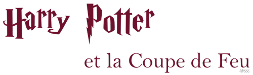 Harry Potter et la Coupe de Feu: le film